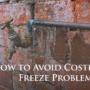 How to Avoid Costly Freeze Problems